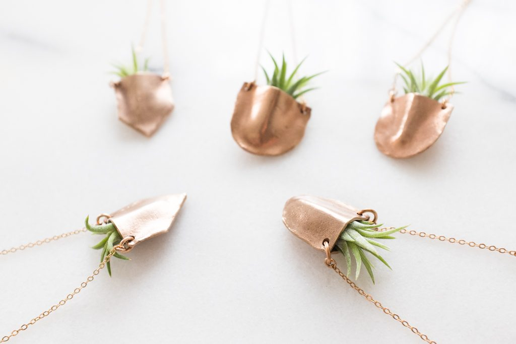 Dawning - Airplant Necklace.jpg