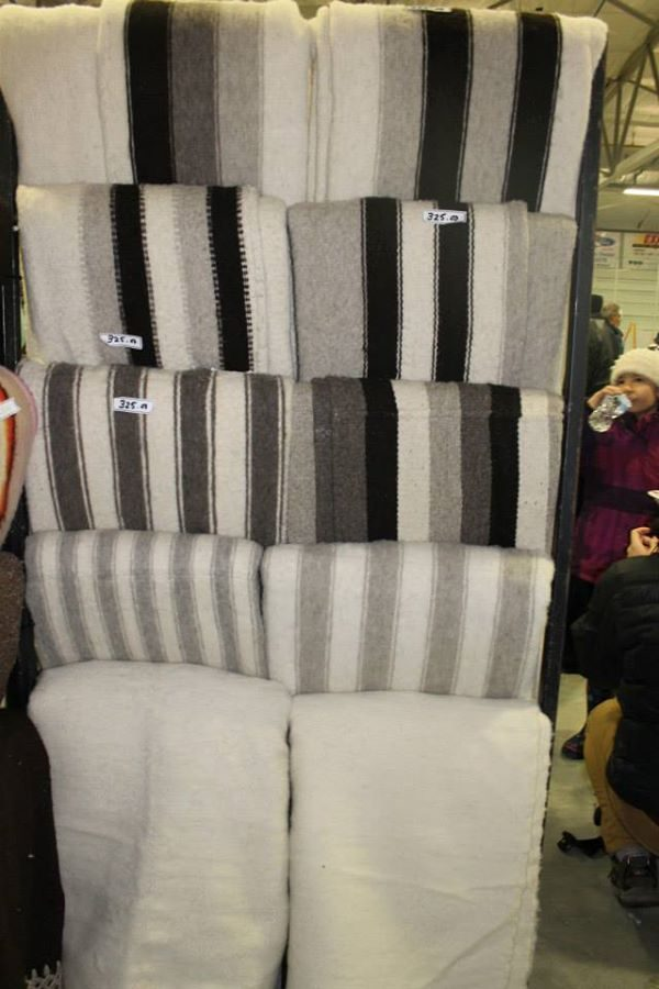 Blankets 1.jpg