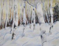 birch trees5 (3).jpg