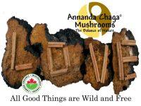 Annanda Chaga Love web.jpg