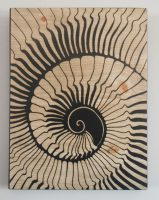 spiral shell1 - twisted spiral studios - katharine kennie.JPG